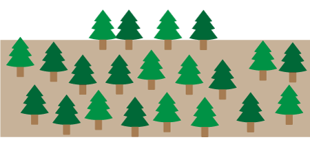 竹木の所有のための地上権の設定